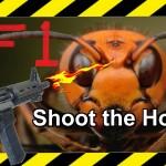 エアガンで蜂の巣を駆除する面白動画
